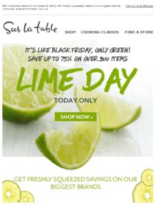 Sur La Table Lime Day email 2017